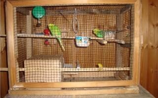 Просторная клетка для попугая сооруженная своими руками