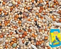 Состав корма Рио для попугаев и его виды