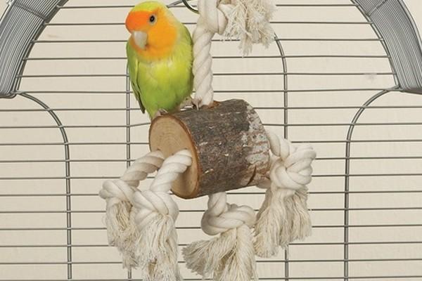Качелька для попугаев