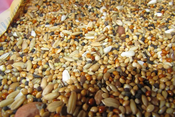 Зерновой состав