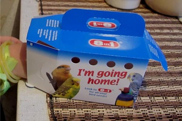 Коробка для попугая